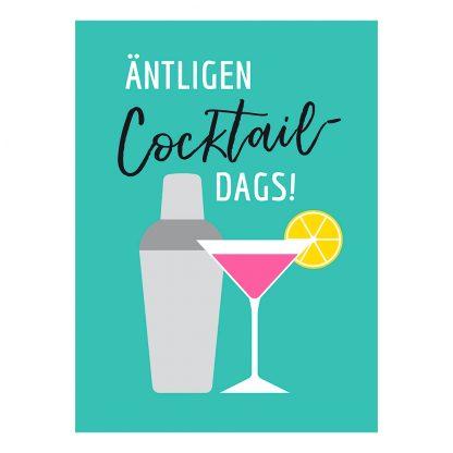 Äntligen Cocktaildags Bok